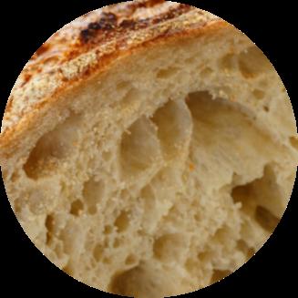 Origin and History of yeast